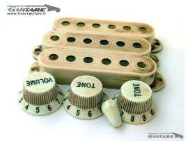 Kit Plastique Relic Stratocaster Mint Green Micros et Pots