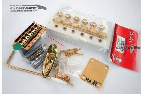 Kit Hardware Accastillage Stratocaster Gold Vintage