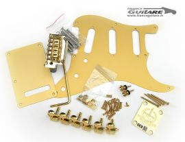 Kit Accastillage Gold Stratocaster Classic Player Vintage Anniversaire 2014