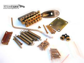 Kit Accastillage Hardware Fender Stratocaster Gold Aged Relic