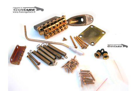 Kit Accastillage Hardware Fender Stratocaster Gold Aged Relic