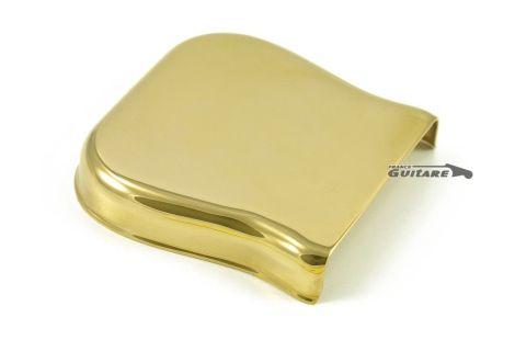 Cache Chevalet Telecaster Fender Nocaster Vintage Gold